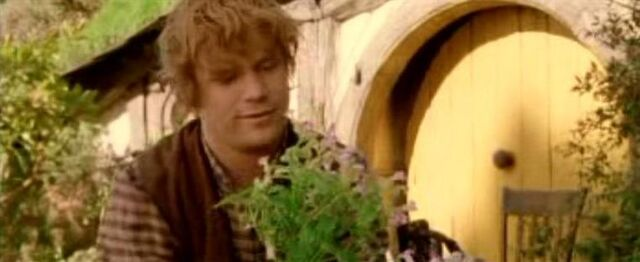 File:Sam as Gardener.jpg