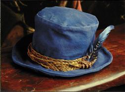 File:Tom Bombadil's hat.png