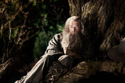 Gandalfthehobbit