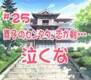 Love Hina (anime) Episode 25