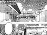 NaritaAirportNegima