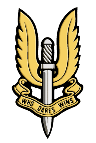 File:Sas badge.png