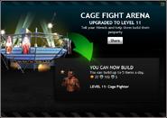 CageFightArenaLevel11