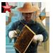 Item beekeeper ruby 01