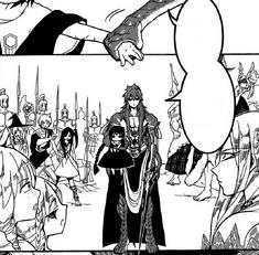Kouen taking Aladdin with him