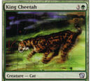 Ghepardo Reale (King Cheetah)
