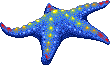 Celestial Sea Star
