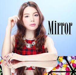 Mirror Cover
