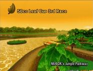 MKW D.K.'s Jungle Parkway