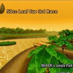 D.K.'s Jungle Parkway in <i><a href=