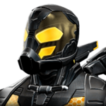 Yellowjacket portrait