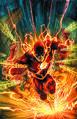 Flash 0069