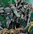 Elephant Man and Zebra Man Prime Earth 0001