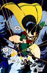 Grayson as Robin