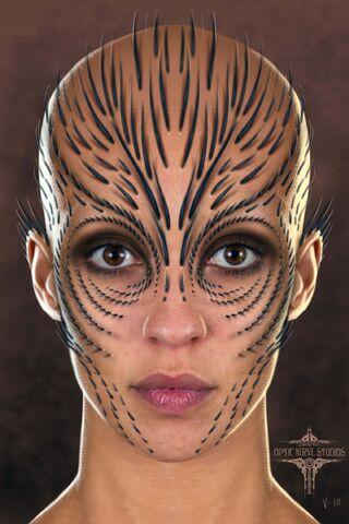 File:Raina Face Concept Art 2.jpg