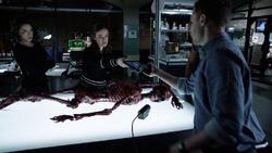 PL Lab Skeleton