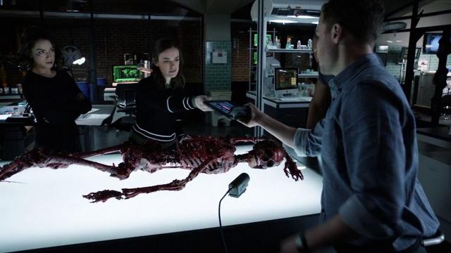 File:PL Lab Skeleton.png
