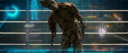 Groot's rap sheet
