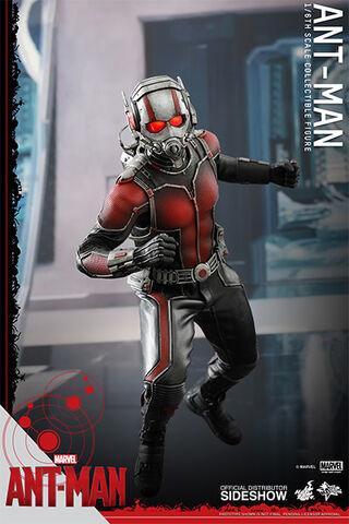 File:Ant-Man Hot Toys 2.jpg