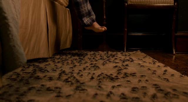 File:Ants on carpet.png