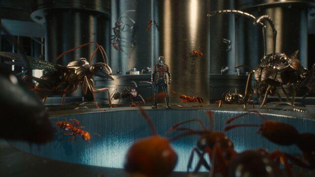 File:Ant-Man screenshot 1.jpg