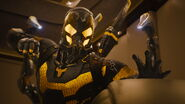 Antmanvyellowjacket