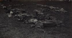 Battle of Finow