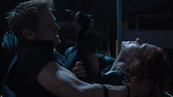 Hawkeye-Fights-Black-Widow