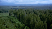 Trillemarka National Park 1
