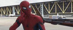 SpiderMan-WhatShouldIDo-CACW