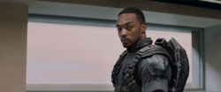 Sam Wilson - The Falcon