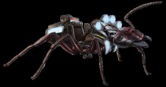 File:Carpenter Ant FH.png