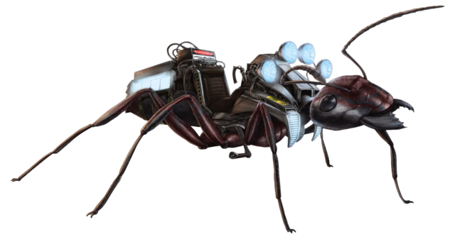 File:Carpenter Ant FH.png