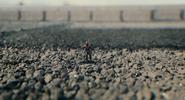 Ant-Man Avengers Roof