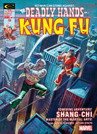 Deadly Hands of Kung Fu Vol 1 13