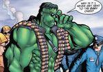 Hulk (Earth-22519) - Fantastic Four Annual Vol 1 2001