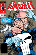 Punisher Vol 2 18