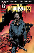 Punisher The End Vol 1 1