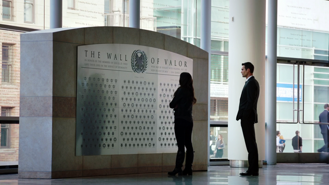 File:WallOfValor1-AoSSeeds.png