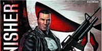 The Punisher (video game)