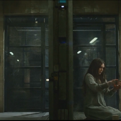 Pietro and Wanda in their cells.