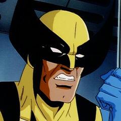 Wolverine interrogates