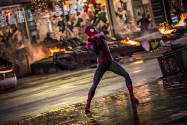 File:Swingingweb-spider.jpg
