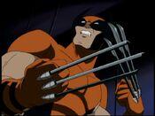 Wolverine (X-Men Evolution)5