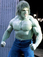Hulk ferrigno