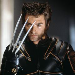 Wolverine sense danger.