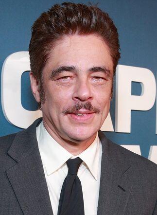 File:Benicio Del Toro.jpg