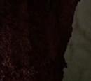 Wong (DeGuere series)