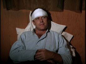 Alan Fudge as Caotain Chandler