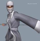 Kenjutsu Kunoichi